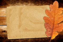 Old grunge paper with autumn oak leaves Stock Photography
