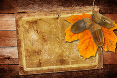 Old grunge paper with autumn oak leaves and acorns Royalty Free Stock Photo
