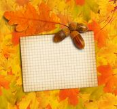 Old grunge paper with autumn oak leaves Stock Photos