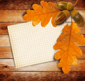 Old grunge paper with autumn oak leaves Royalty Free Stock Image