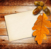 Old grunge paper with autumn oak leaves and acorns Stock Image