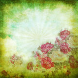 Old grunge paper ,flower pattern Royalty Free Stock Photos