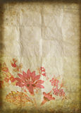 Old grunge paper ,flower pattern Stock Image
