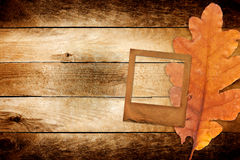 Old grunge paper slide with autumn oak leaves Royalty Free Stock Photos