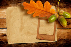 Old grunge slide with autumn oak leaves and acorns Stock Photo