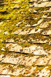 Old grunge stone roof with moss pattern background Stock Images
