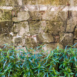 Old grunge stone wall background texture Royalty Free Stock Photos