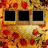 Old grunge torn frame  with roses Royalty Free Stock Photos