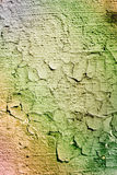 Old grunge wall. Fine texture of grunge aged wall Royalty Free Stock Image