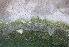 Old grunge wall Stock Photo