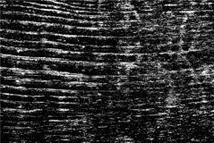 Old Grunge Weathered Black And White Texture stock image