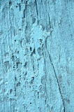 Old grunge weathered blue door Stock Images