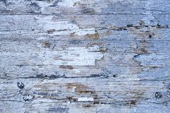 Old grunge and weathered white and gray painted wooden wall plank texture background. Marked by long exposure to the elements outdoors and with paint peeling Royalty Free Stock Photos