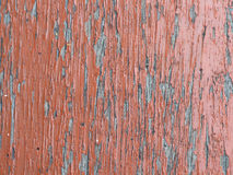 Old, grunge wood panels Stock Image