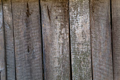 Old, grunge wood panels Stock Photo