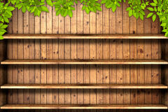 Old grunge wood shelf with leaves Stock Photo
