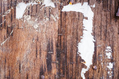 Old grunge wood texture background Royalty Free Stock Photo