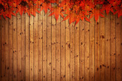 Old grunge wood texture with leaves Stock Image