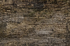 Old grunge wood wall Royalty Free Stock Photo