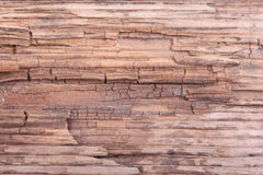Old grunge wooden surface macro background Royalty Free Stock Images