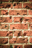 Old grungy background of a brick wall texture Royalty Free Stock Image
