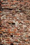 Old grungy background of a brick wall texture Royalty Free Stock Images