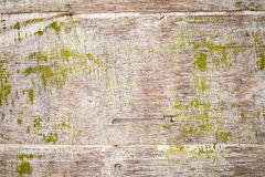 Old grungy plywood with green paint, background texture Stock Images