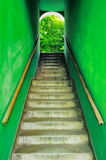 Old grungy stairs. With handrails on green wall royalty free stock photography