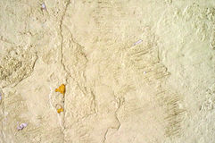 Old grungy wall texture stock photos