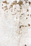 Old, grungy white background of natural plaster wall surface. Royalty Free Stock Image