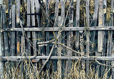 Old grungy wooden fence Stock Photography