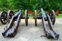 Old guns in the garden. Of roses Royalty Free Stock Photos