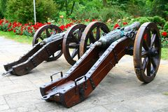Old guns in the garden. Of roses Royalty Free Stock Image
