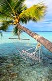 Beach hammock Stock Images