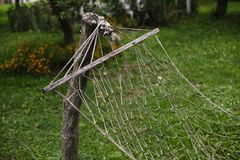 Old hammock hanging in the garden Stock Image