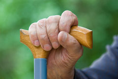 Old hand. Old tired man's hand holding stick on a green background Stock Photography