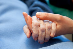 Old Hand Care Elderly. A young hand touches and holds an old wrinkled hand Royalty Free Stock Photography