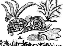 Old hand drawing made in ink. Old hand drawing of an turtle and snail covered with patterns  made in ink Royalty Free Stock Photography