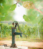 Old hand water pump in the vineyard Stock Photo