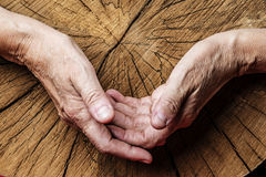 Old Hands And Old Tree Royalty Free Stock Photos