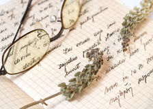 Old handwritten recipes and dried basil. Close up photo Royalty Free Stock Photos