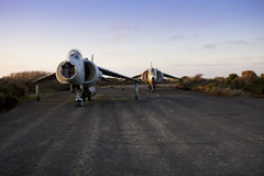 Old harrier airplane. S in a disused airfield Royalty Free Stock Photography