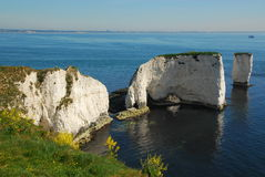 Old Harry Rocks, Dorset Stock Photography