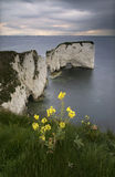Old Harry Rocks - Dorset coast, England. Another view from the Old Harry Rocks - with the Pool harbor in the far distance Stock Photos