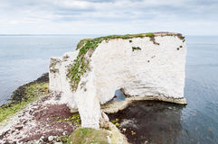 Old Harry Rocks, Dorset, United Kingdom. The Old Harry Rocks are three chalk formations, including a stack and a stump, located on the Isle of Purbeck in Dorset Stock Photo