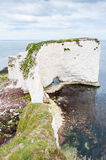 Old Harry Rocks, Dorset, United Kingdom. The Old Harry Rocks are three chalk formations, including a stack and a stump, located on the Isle of Purbeck in Dorset stock photos