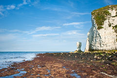 Old Harry Rocks Jurassic Coast UNESCO Stock Photos