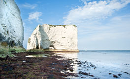 Old Harry Rocks Jurassic Coast UNESCO England Royalty Free Stock Image