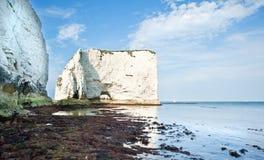 Old Harry Rocks Jurassic Coast UNESCO England Royalty Free Stock Image