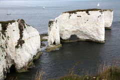 Old Harry Rocks, Poole royalty free stock image